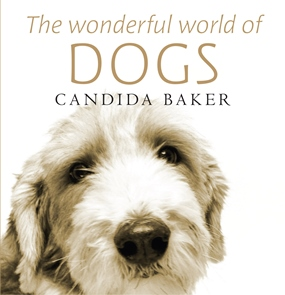 The Wonderfull World of Dogs